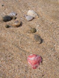 サンセットビーチ03.JPG