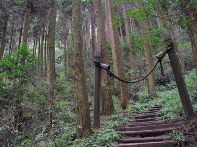 Kumaso_Ana05.jpg