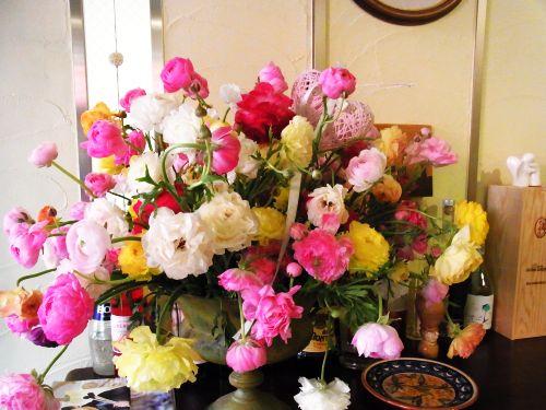 fiori di compleanno di kei.jpg